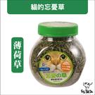 :貓點點寵舖:貓草〔忘憂草,薄荷草,220ml〕119元