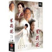 大陸劇 - 茉莉花DVD (全30集/4片裝/雙語) 陳道明/陶紅