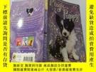 二手書博民逛書店Magic罕見Puppy:神奇的小狗Y200392