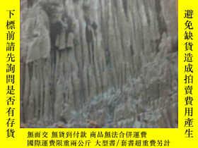 二手書博民逛書店三峽罕見three gorges (中英文)Y247537 秦文
