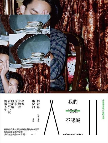 (二手書)我們從未不認識:林宥嘉音樂小說概念書