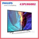 世博惠購物網◆PHILIPS飛利浦 43吋4K UHD聯網智慧顯示器+視訊盒 43PUH6002 液晶螢幕 電視◆