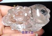 『晶鑽水晶』天然白水晶 福氣小豬 超白超亮超可愛!下方還刻著古錢喔^^免運費