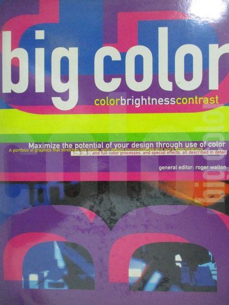 【書寶二手書T3/設計_YFO】Big Color-Color Brightness Contrast_Roger Wa