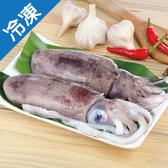 野生大軟絲500g+-10%/隻【愛買冷凍】