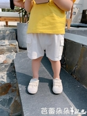 LUSON定制 兒童短褲夏裝新款男童百搭工裝褲男寶寶褲子潮『快速出貨』