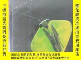 二手書博民逛書店What罕見Good Are Bugs?: Insects in