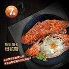 【屏聚美食】斯里蘭卡母花蟹7隻(200-250g/隻)~一次購買2組只要899/組