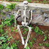 骷髏骨架干尸擺件裝飾萬圣節尸體模型