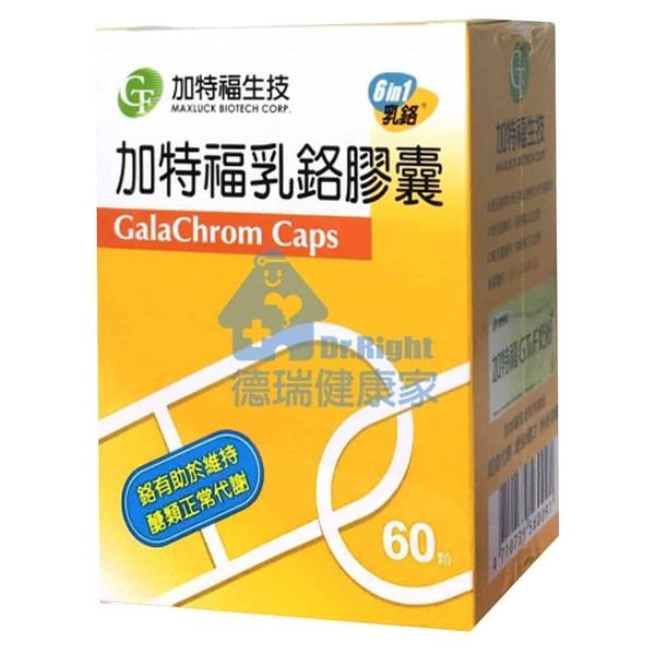 加特福生技 加特福 乳鉻膠囊 200mcg 60粒/盒◆德瑞健康家◆