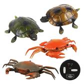 【888便利購】紅外線遙控仿真海洋動物(螃蟹/烏龜)(授權)