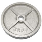 奧林匹克鑄鐵槓片25KG(二入)/重量片/烤漆槓片/重量訓練/