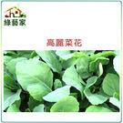 【綠藝家】A09.高麗菜花種子500顆...