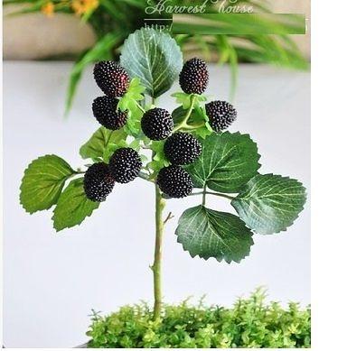 小野莓草莓促銷特價3個組(圖一)