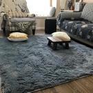 可水洗絲毛地毯客廳沙發臥室床邊可愛家用...