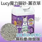 PetLand寵物樂園《Lucy》魔力貓...