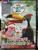 挖寶二手片-T04-256-正版DVD-動畫【小鳥3號:菲菲與三毛的聖誕節】國英語發音(直購價)