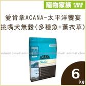 寵物家族-ACANA愛肯拿-太平洋饗宴 挑嘴犬無穀配方(多種魚+薰衣草)6kg