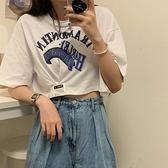 高腰純棉短袖t恤女小眾設計感寬鬆韓版ins潮泫雅風短款露臍裝上衣 【端午節特惠】