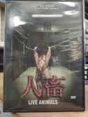 挖寶二手片-T04-545-正版DVD-電影【人畜】啟發自真實事件(直購價)