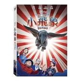 【迪士尼動畫】小飛象 (2019)-DVD 普通版/真人版