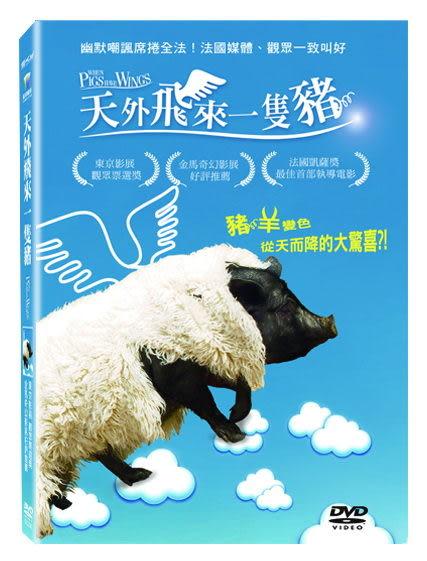 天外飛來一隻豬 DVD 免運 (音樂影片購)