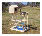 小鳥架子 鸚鵡站架 木質實木中大型 訓練架 玄鳳虎皮牡丹小太陽鳥站架 初秋新品