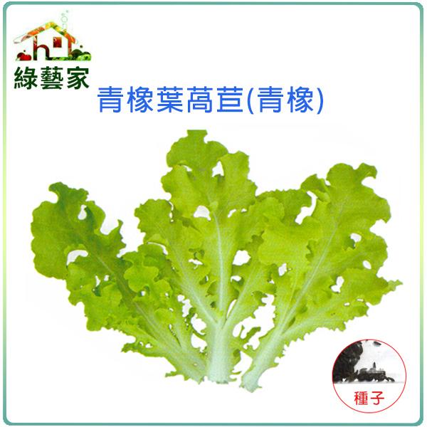 【綠藝家】大包裝A78.青橡葉萵苣種子15克(約15000顆)(青橡)