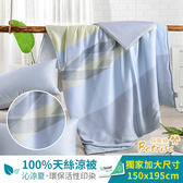 立新寢具【Betrise】生活絮語 植萃系列100%奧地利天絲鋪棉涼被.四季被 5X6.5尺(獨家加大尺寸)