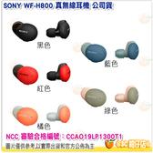 SONY WF-H800 真無線耳機 公司貨 五色可選 續航力16小時 高解析音質 支援快速充電