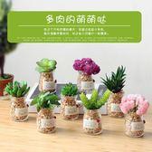 創意仿真盆栽植物小擺件室內客廳仿真多肉植物綠植迷你小盆景裝飾