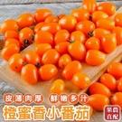 【果農直配-全省免運】橙蜜香小蕃茄X1箱...