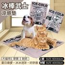 《48HR快速出貨》*KING*寵喵樂 冰棒武士涼感墊 L號 凝膠涼爽 耐抓 耐髒 易清潔 犬貓涼墊