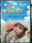 挖寶二手片-Z83-056-正版DVD-電影【風箏孩子王】-柏林影展最佳影片(直購價)