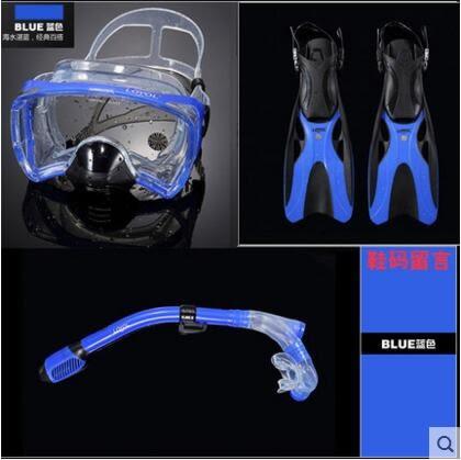 浮潛三寶裝備大視野面罩成人浮淺用品【藍色雙閥門】