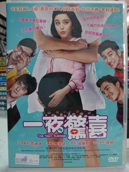 挖寶二手片-Y80-026-正版DVD-華語【一夜驚喜】-范冰冰 吳佩慈