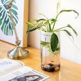 半島良品創意懶人魚缸小型迷你辦公室桌面透明玻璃生態金魚缸圓形  ATF 極有家