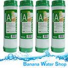 【Banana Water Shop】EVERPOLL愛惠浦活性碳濾心公司貨 SGS 【 4支 】 EVB-U100A