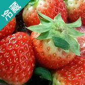 韓國草莓(大)500g/盒【愛買冷藏】