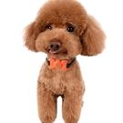 狗狗止吠器無傷害可錄音自動止叫防叫器電子項圈訓狗器 快速出貨