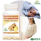 【赫而司】天然生薑濃縮精華植物膠囊(60顆/罐)妊娠好夥伴GINGER