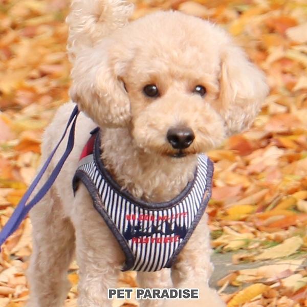 【PET PARADISE 寵物精品】Field Glide  牛仔布條紋胸背【SS】 寵物胸背帶