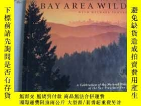 二手書博民逛書店Bay罕見area wild (a celebraation o