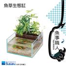 SUISAKU水作 【魚草生態缸】魚缸 造景 魚菜共生 套缸 直接養魚 日本製造 透明美觀 魚事職人