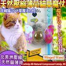 【培菓平價寵物網】美國CosmicCatnip宇宙貓 》100%全天然壓縮薄荷貓草玩具魔杖-貓女神