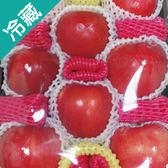 賓利蘋果禮盒8入 / 盒【愛買冷藏】