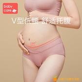 孕婦內褲純棉孕早期孕中晚期產婦懷孕產后內衣內褲低腰女【小橘子】