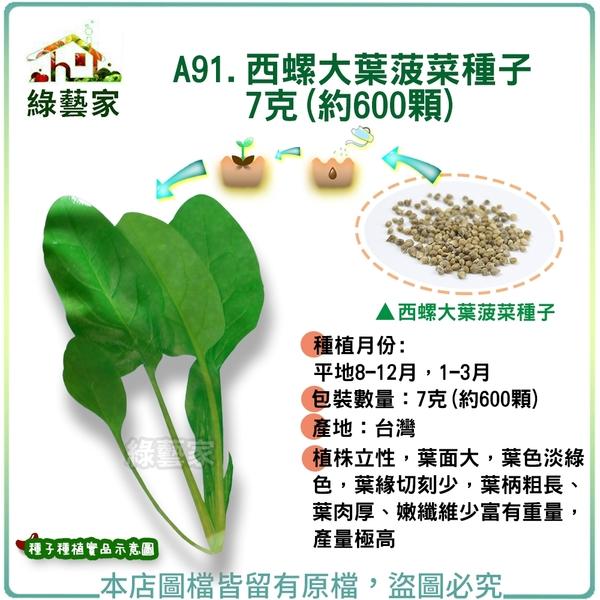 【綠藝家】A91.西螺大葉菠菜種子7克(約600顆)