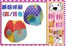 *粉粉寶貝玩具*蘑菇球屋+送100球/彩盒裝~ST安全玩具