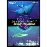 HD高畫質拍攝-奇蹟的大地-巴哈‧加利福利亞DVD